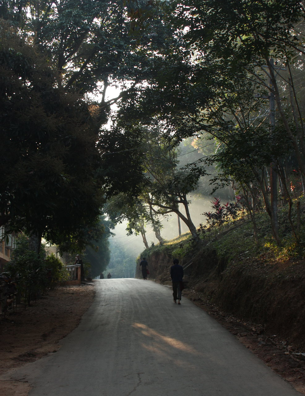 The Road Leading to the Meditation Hall